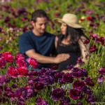 San Diego Newborn and Maternity Photography