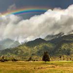 Landscape Photography - Rainbow at Westland Tai Poutini National Park, New Zealand
